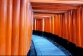 De bekendste tempel van Japan: Fushimi Inari Shrine