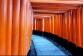 De bekendste tempel van Japan: Fushimi Inari Shrine