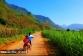 Niet 1, niet 2 maar maar liefst 6 reisroutes door Vietnam
